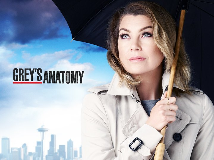 Image result for greys season 13