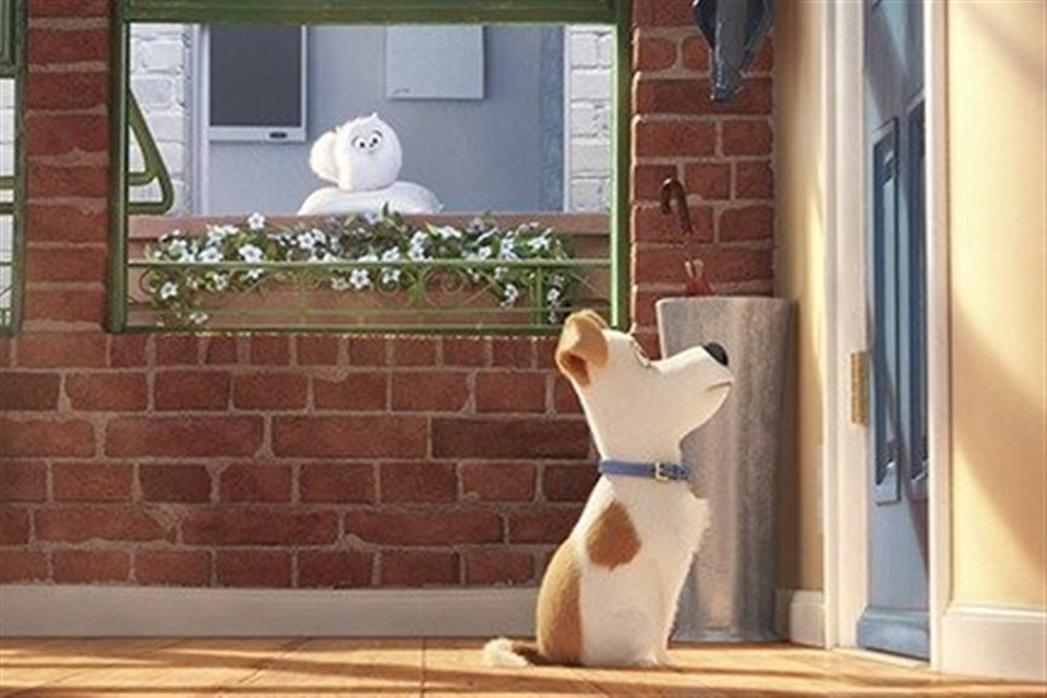 The Secret Life of Pets - What2Watch