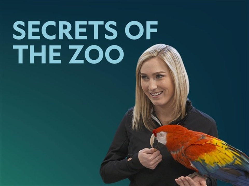 Secrets of the Zoo - What2Watch